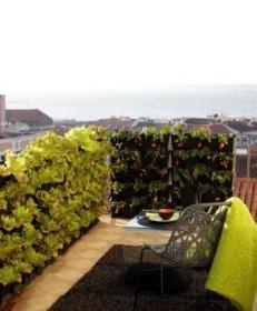 mini garden 15 231x280 - Μικρό μπαλκόνι? Μικρός κήπος!