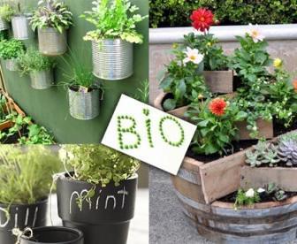 futa 1 336x276 - Αποκτήστε το προσωπικό σας παράδεισο, φυτεύοντας στις γλάστρες σας εποχιακά και βιολογικά λαχανικά, φρούτα ή καλλωπιστικά φυτά