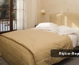 pilio 1 336x280 - Από 123€ για 3ήμερη διαμονή, 2 ή 4 ατόμων, με ημιδιατροφή, στο Hotel Άλκηστις 4 Εποχές, στην Πορταριά Πηλίου!